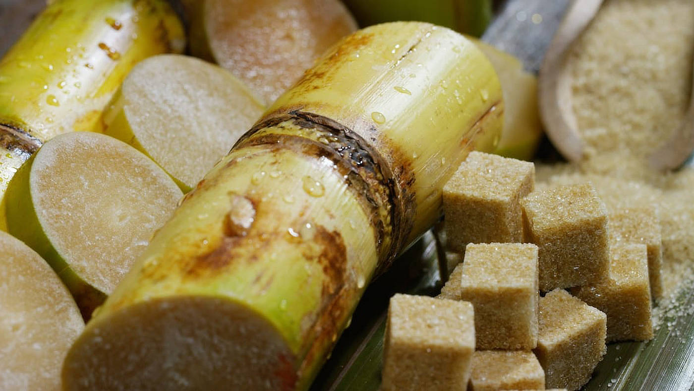 cane sugar refining equipment